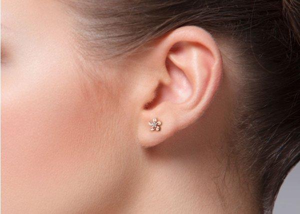 18K Rose Gold IF-FG Diamond Earring 0.018 ct-SDER1183